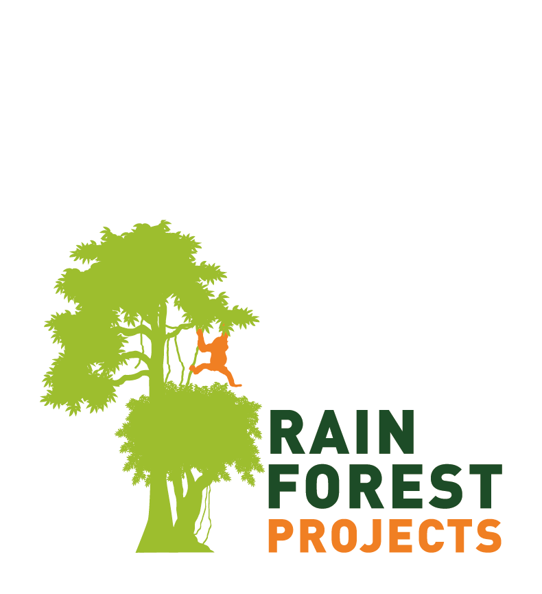 Rainforest Projects