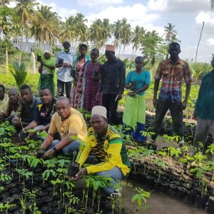 Restoring Tanzania's forests